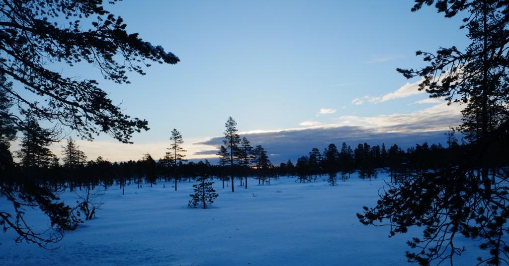 Snille sletter ender i høyfjell og flott utsikt ved Vikerfjell
