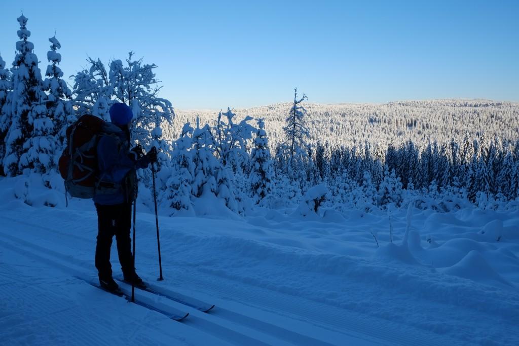 Det er 20 minusgrader og postkortstemning i Nordmarka.