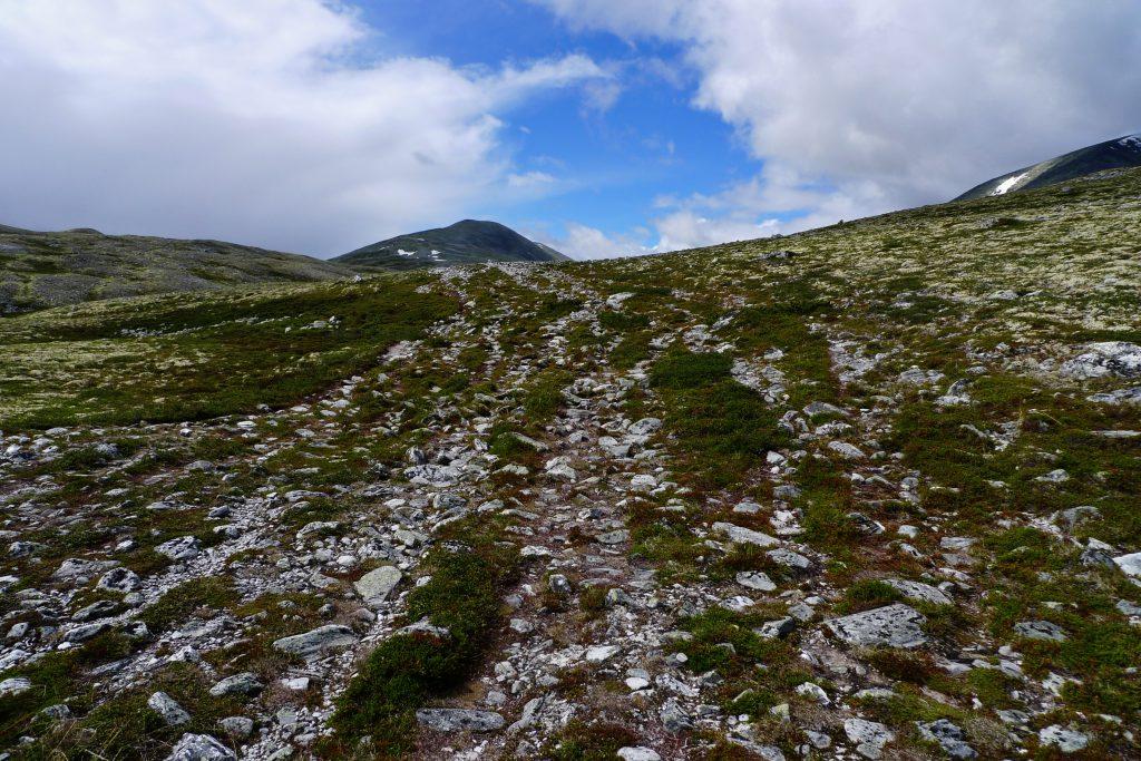I områder med stor ferdsel, som her på en T-merket rute i Rondane, er spor etter mennesker svært tydelig.