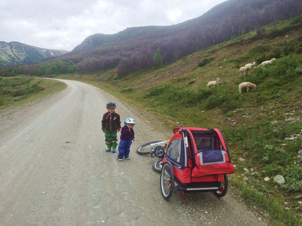 Det er ypperlige sykkelforhold i Grimsdalen