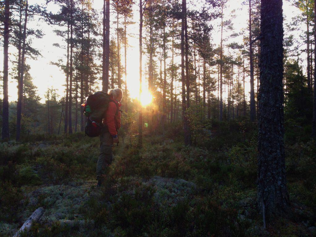 10 fine teltplasser i Oslomarka Tursøstre